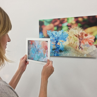 Rheology, Ground Waters series (augmented reality installation view)
