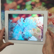 Rheology, Ground Waters series (augmented reality demo)