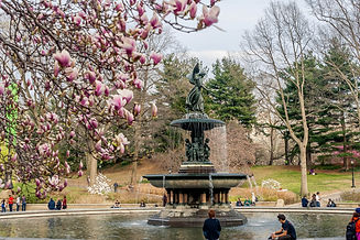 angel-bethesda-fountain-central-park-332