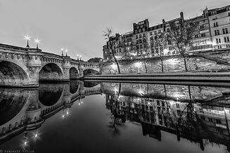 pont neuf reuse_edited.jpg