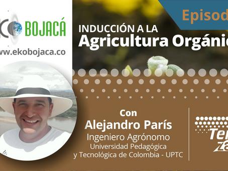 Inducción a la Agricultura Orgánica - Episodio 3