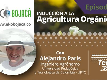 Inducción a la Agricultura Orgánica - Episodio 4