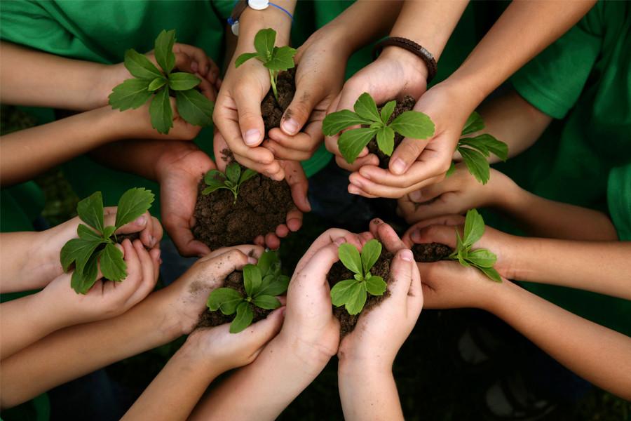 Compost-niños_3.jpg