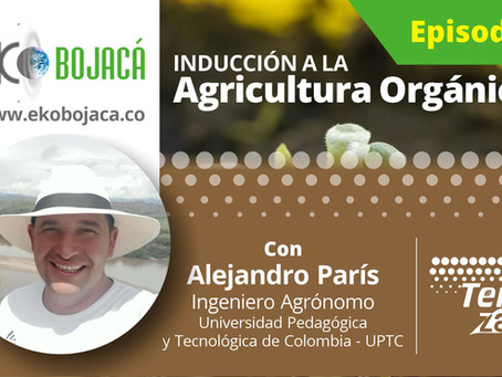 Inducción a la Agricultura Orgánica - Grabaciones