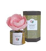 Le Voile Floral - ソラフラワーディフューザー PIVOINE(シャクヤク)