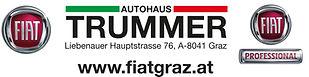 Trummer logo.jpg
