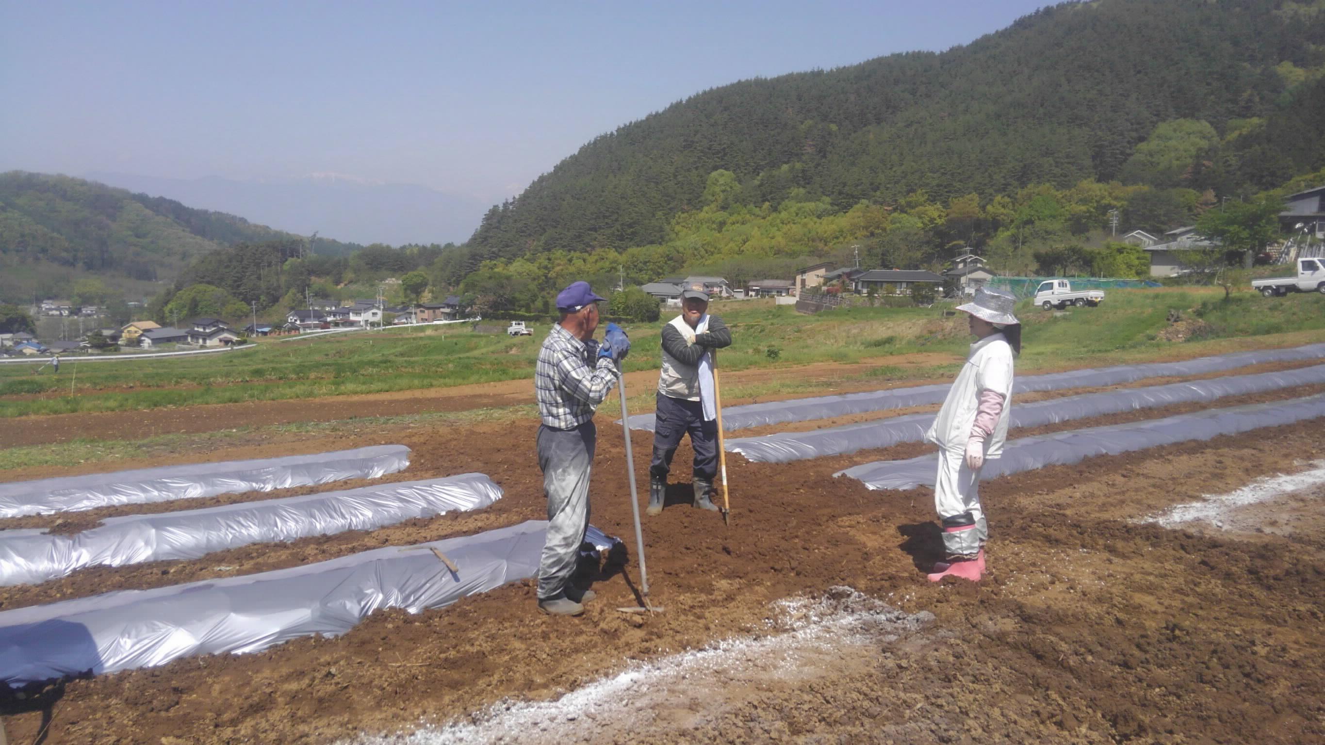 H30.4 活性化部会トマト③