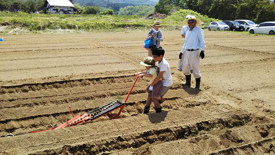 親子農業体験①