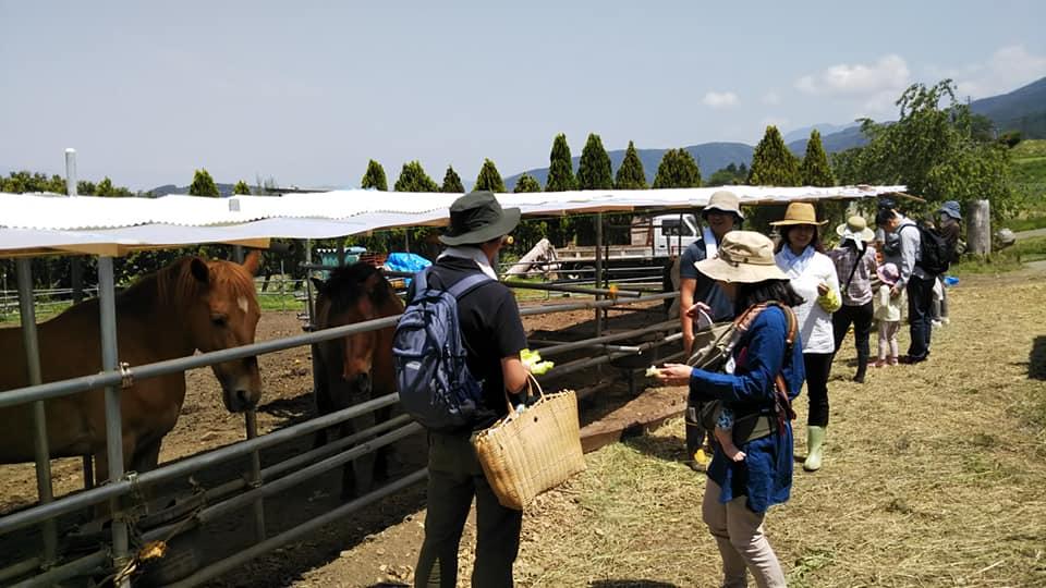 親子農業体験③
