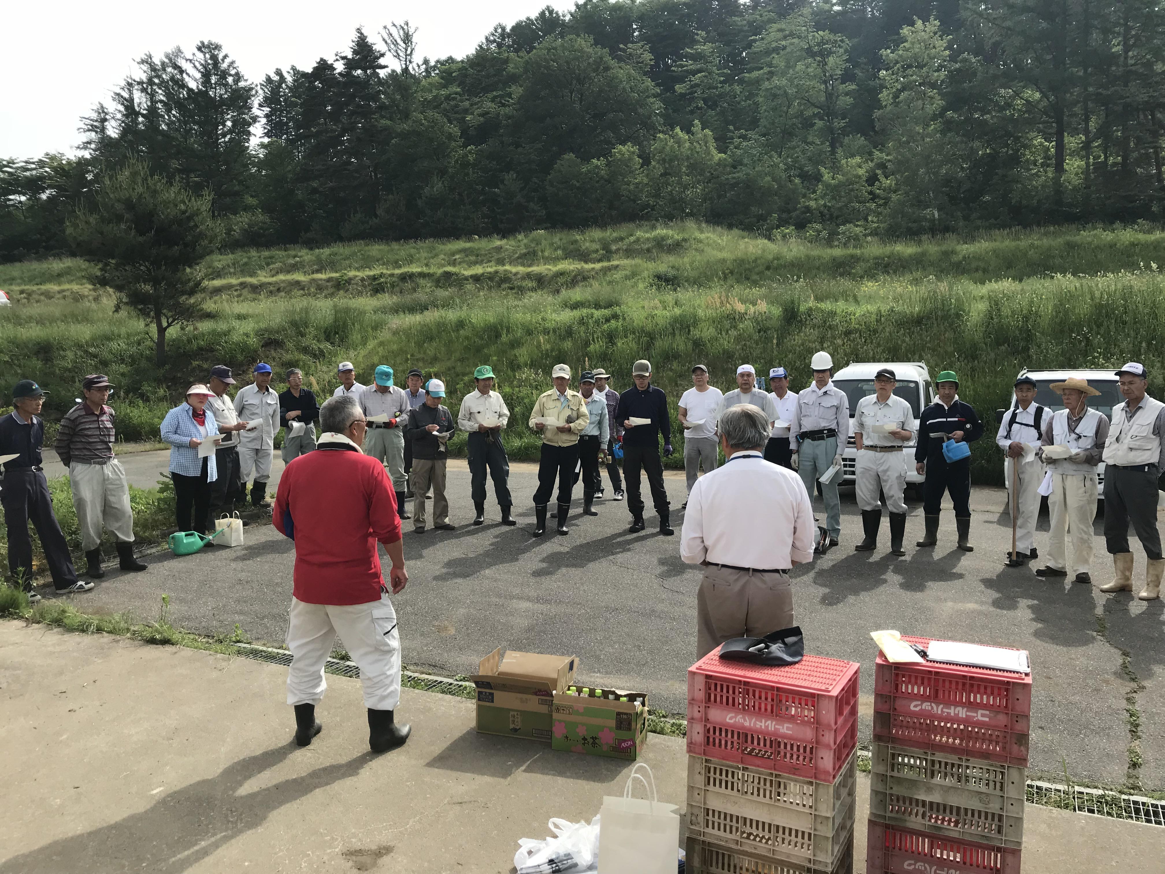 芝桜の捕植・草刈作業③