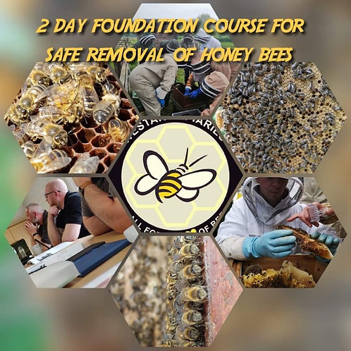 16th - 17th June South West Safe removal of honey bees course per person.