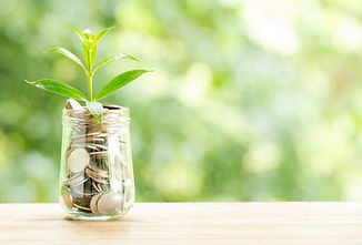 plant-growing-from-coins-glass-jar-blurr