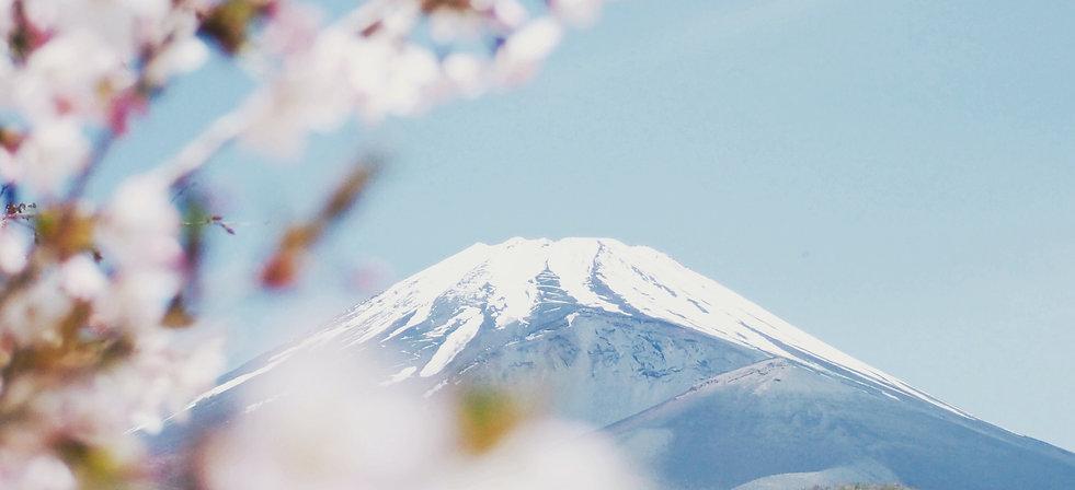 kumiko-shimizu-uBOCEV5RGzY-unsplash.jpg