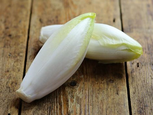 Chicory White ( Each )