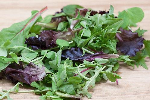 Salad Mixed Leaf ( 125g )