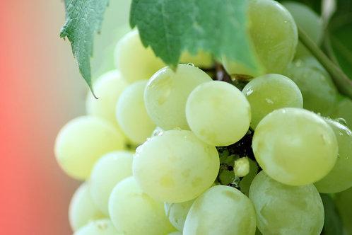 Grapes White ( 500g )