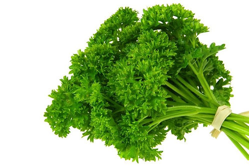 Curly Parsley ( Packet )