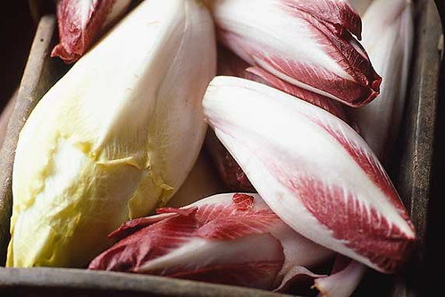 Chicory, Red ( Each )