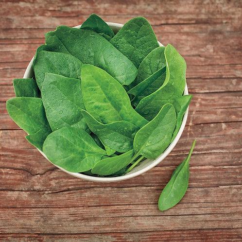 Baby Leaf Spinach ( 200g )