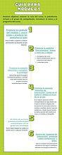 Verde Líneas Fotosíntesis Biología Infografía.jpg
