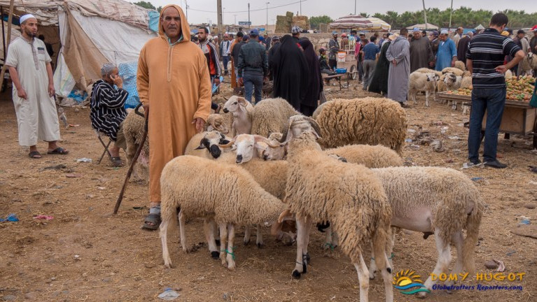 Marché du Maroc