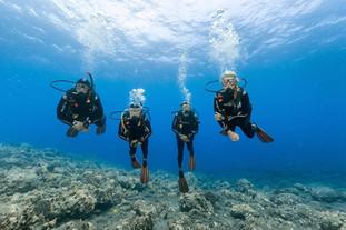 La plongée sous marine pour prendre conscience de la richesse et de la fragilité des océans