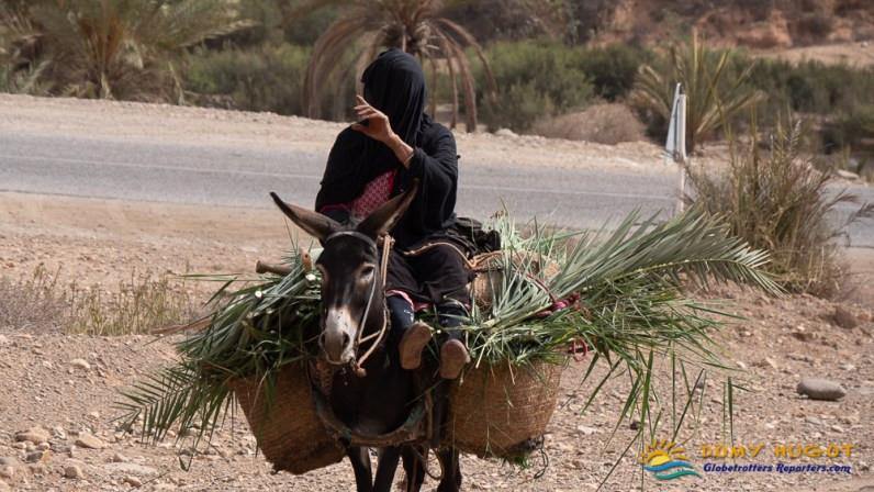 Ane et femme Marocaine