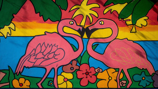 Bonaire, l'île à la nature protégée