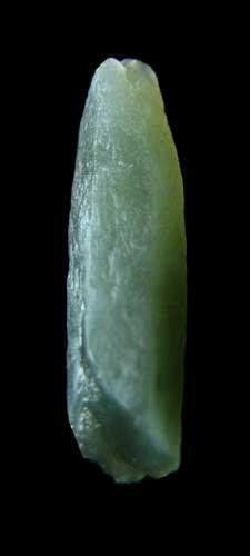 Prasem Crystal-3
