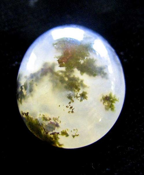 Moss Agate Cabochon-3