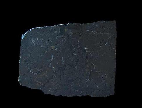 Shungite Stone-10