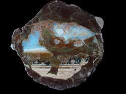 Polished Opal Thunderegg
