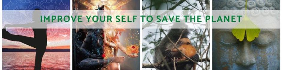 improve your self to save the planet.jpg