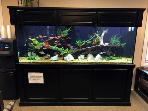 Veterans Place Aquarium