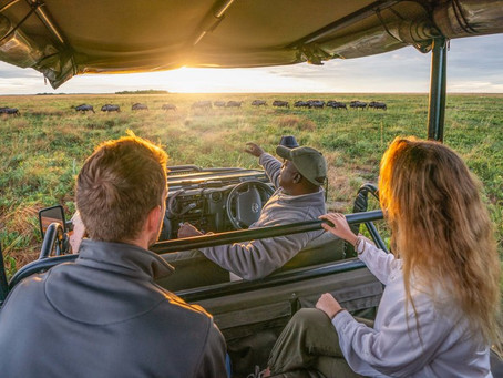 Zambia Safari? Time+Tide CEO Bruce Simpson Gets Us Excited