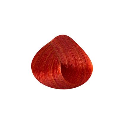 Tutto Hair Color - 8.44 LT BLONDE INTENSE COPPER