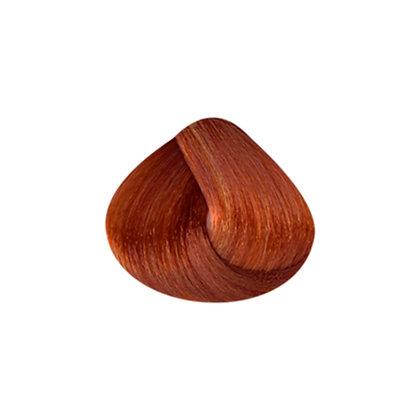 Tutto Hair Color - 8.43 LT BLONDE COPPER GOLD