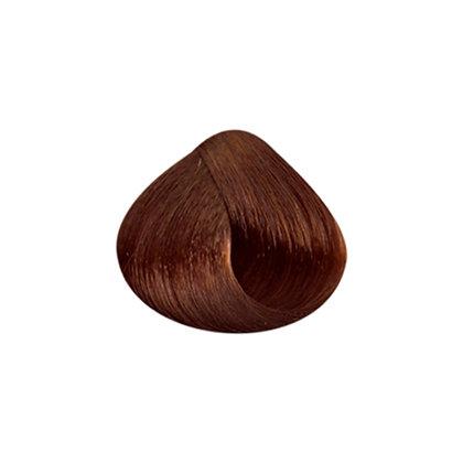 Tutto Hair Color - 7.3 MED BLOND GOLDEN
