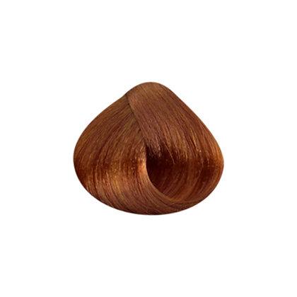 Tutto Hair Color - 8.3 LT BLONDE GOLDEN