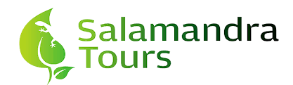 logo salamandra tours.png