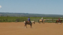 May 2017 Reining Clinic 3