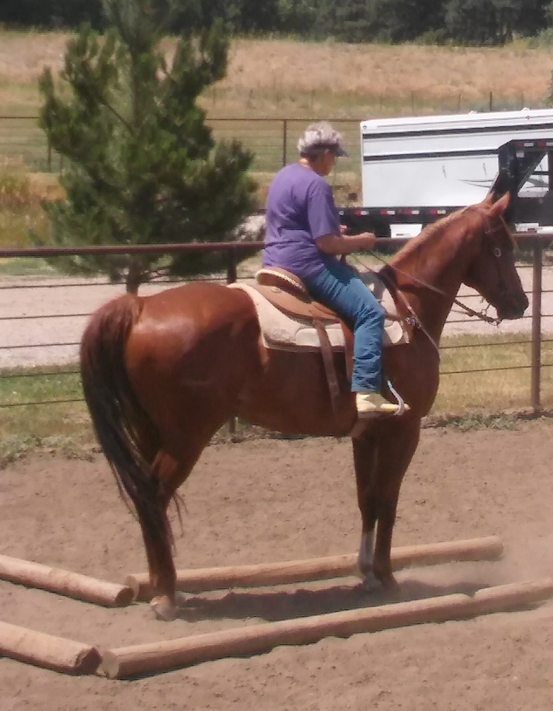 July 2017 Ranch Horse Clinic 3