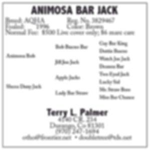 Animosa Bar Jack[2600].jpg