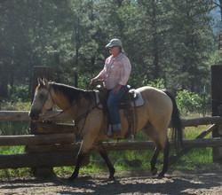 Aug 2017 Horse manship Clinic 4