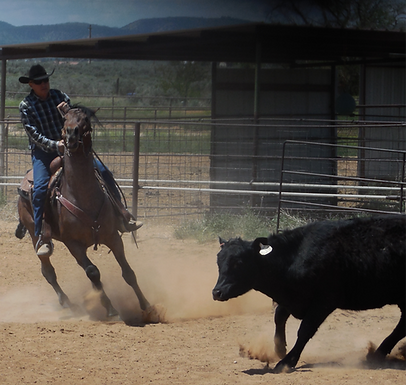 1. FCCRA Reinng & Cow Work Clinic with Jake Cruzan