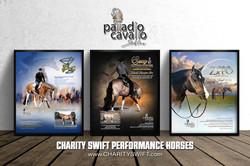 Charity Swift Ad