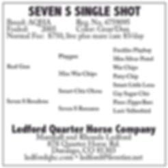Seven S Single Shot[2613].jpg