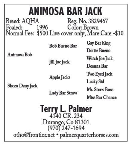 Animosa Bar Jack.jpg