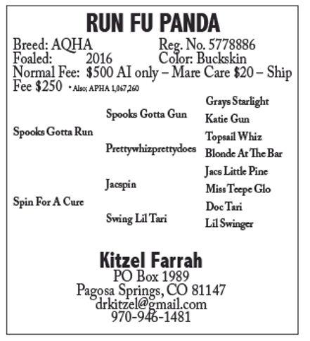 Run Fu Panda.jpg