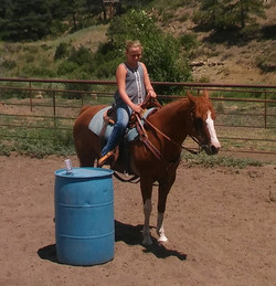 July 2017 Ranch Horse Clinic 2